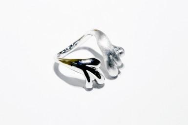 Ring – jawjau –