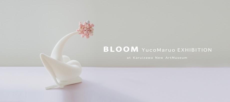 4/27〜5/30 丸尾結子作品展 Yuco Maruo [ BLOOM ]展